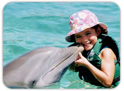Dolphin and Kid